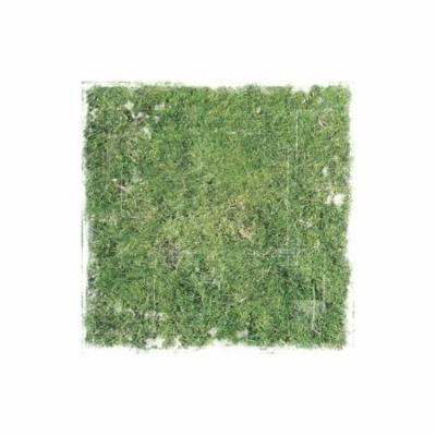 Paper House Paper 12x12 Distressed Grass (pack of 25)