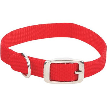5/8 By 14 Inch Buckle Dog Collar 31414 by Westminster Pet Products