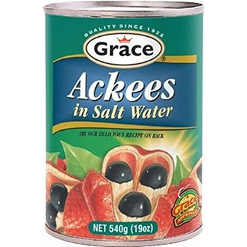 GRACE ACKEES IN SALT WATER 19 OZ (CAN)