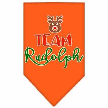 Team Rudolph Screen Print Bandana Orange Small