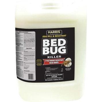 Egg Kill & Resistant Bed Bug Killer 5 gallon ready-to-use