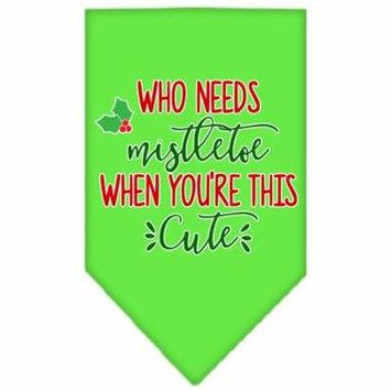 Who Needs Mistletoe Screen Print Bandana Lime Green Small
