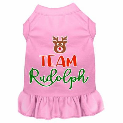 Team Rudolph Screen Print Dog Dress Light Pink Med