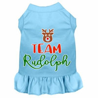 Team Rudolph Screen Print Dog Dress Baby Blue Xxxl