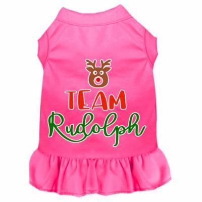 Team Rudolph Screen Print Dog Dress Bright Pink Xxl