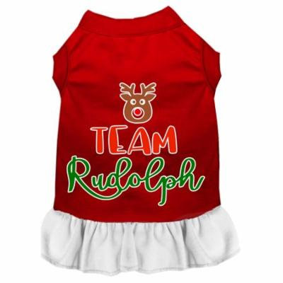 Team Rudolph Screen Print Dog Dress Red With White Med