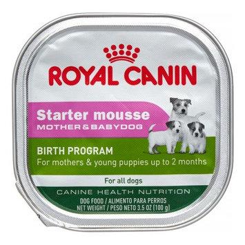 Royal Canin Starter Mousse Wet Dog Food