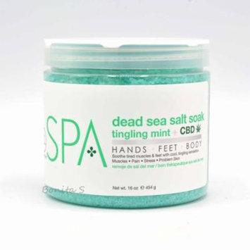 BCL SPA Dead Sea Salt Soak Tingling Mint + CBD 16 oz