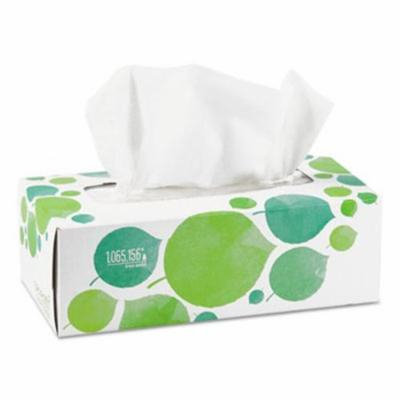 Seventh Generation Recycled Facial Tissue, 2-Ply, 175 Tissues (SEV13712BX)