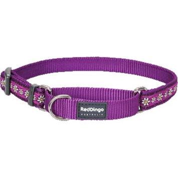 Red Dingo MC-DC-PU-LG Martingale Dog Collar Design Daisy Chain Purple Large