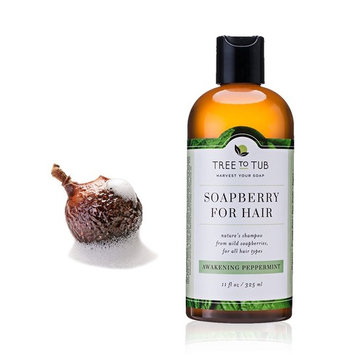 Real, Mint Shampoo For Oily Hair. The Only pH 5.5 Balanced Itchy Scalp Shampoo for Men and Women with Sensitive Skin – Peppermint Argan Shampoo with Organic Wild Soapberries, 8.5 oz—by Tree To Tub [Awakening Peppermint]