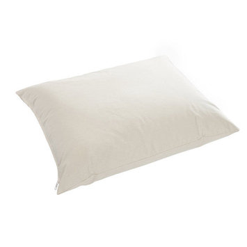 Pillow Company Llc 100% Cotton Buckwheat Hull Green Tea Orange Aromatherapy Night Pillow with Zippered Casing and Certified Organic Filling