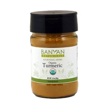 Banyan Botanicals Turmeric Powder - USDA Organic, 1/2 lb - Curcuma longa - Traditional Cooking Spice That Promotes Digestion Overall Health, and Well-being