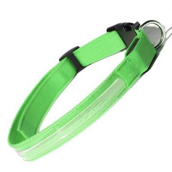 Oxgord PTCL-02-LG-GN Large New Style Pet LED Collar - Green