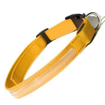 Oxgord PTCL-02-SM-YW Small New Style Pet LED Collar - Yellow
