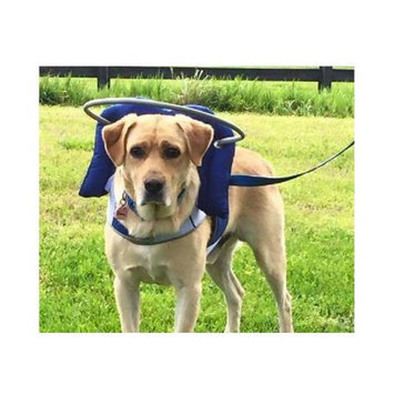 Muffin's Blind Dog Clubhouse Muffin's Halo Guide for Blind Dogs, Large (Blue)