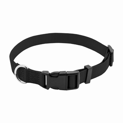Westminster Pet Products 6 Packs PE3/4x20 BLK Dog Collar
