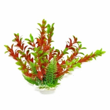Aquatop Hygro Aquarium Plant - Red & Green: 20