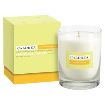 Essentials Collection Signature Boxed Candle Citron Ginger 10.5oz - Caldera®