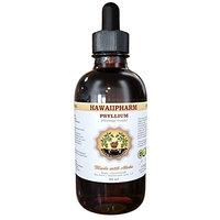 Psyllium Liquid Extract, Psyllium (Plantago Psyllium) Tincture, Herbal Supplement, Hawaii Pharm, Made in USA, 32 fl.oz