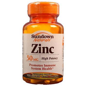 Sundown High Potency Zinc Tablets, 100 CT (Pack of 3)
