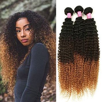 Mink Hair 3 Tone Ombre Color Kinky Curly Hair (10 10 10) 8A Grade Brazilian Virgin Human Hair Extension 1B/4/27# Kinky Curly Weave Hair Bundles 100g/pc