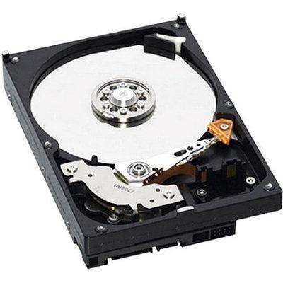 Western Digital WD AV WD2500AVJS 250GB Internal Hard Drive - SATA - 7200rpm - 8MB Buffer - Hot Swappable