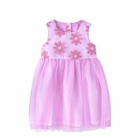Toddler Girl Embroidered Ballerina Special Occasion Dress
