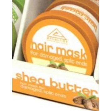 Excelsior Shea Butter Hair Mask Jar 6 oz. (Pack of 2)