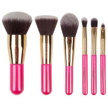 Blank Canvas Cosmetics Dimension Series 6 Piece Travel Brush Set