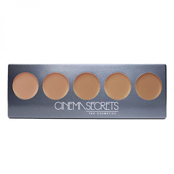 Cinema Secrets Ultimate Foundation 5 in 1 Pro Palette - 500B Series