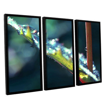 Asstd National Brand After Garden Rain 3-pc. Floater Framed Canvas WallArt