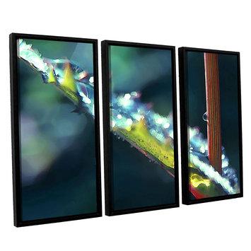 Asstd National Brand After Garden Rain 3-pc. Floater Framed Canvas WallArt