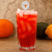 Texas Longhorns 6-Pack Team Logo Drink Picks