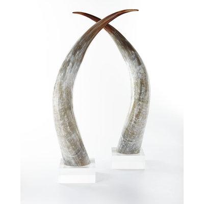 Ankole Large Horns, Set of 2