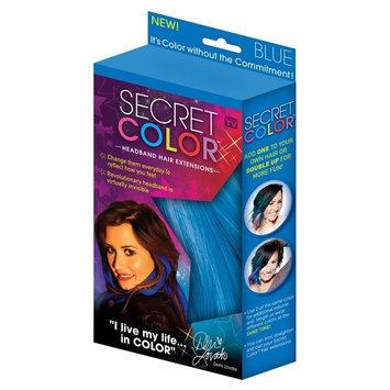 As Seen On TV Secret Color Hair Extensions - Blue