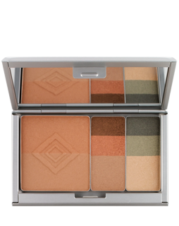 Aveda Total Face Envirometal Med Compact (8)