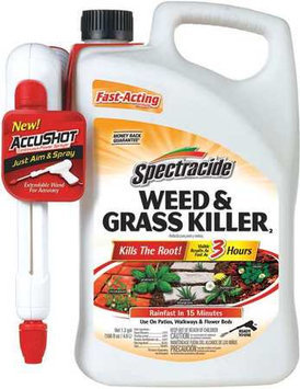 SPECTRACIDE 96370 Grass and Weed Killer,1.33 gal.