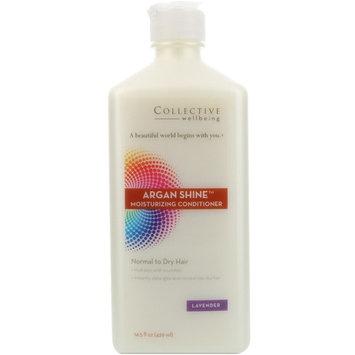 Life Flo Health, Argan Shine Moisturizing Conditioner, Normal to Dry Hair, Lavender, 14.5 fl oz (429 ml)
