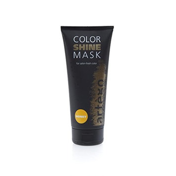 BON VIVANT SALON Artego Color Shine Masks (HONEY) for At-Home Maintenance to Preserve Color