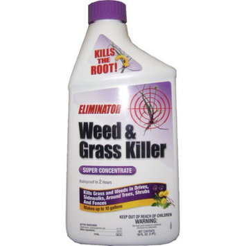 Grotec Eliminator Super Concentrate Liquid Weed and Grass Killer, 16 fl oz