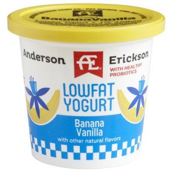 Anderson Erickson Dairy AE BANANA VANILLA YOGURT