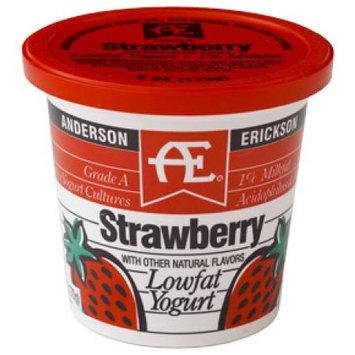 Anderson Erickson Dairy AE STRAWBERRY YOGURT