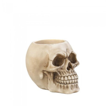 Dragon Crest 10017865 3.25 x 4.5 x 3.5 in. Skull Pen Holder