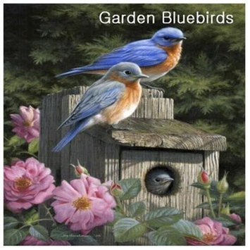 Hi-Look Inc. Hautman Brothers Bluebird single design
