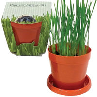Walters Seed Company Indoors Dog Grass Planter Growing Kit - With Saucer, Peat & Wheatgrass Seeds