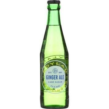 Boylan Ginger Ale, 12 Ounce (12 Glass Bottles)
