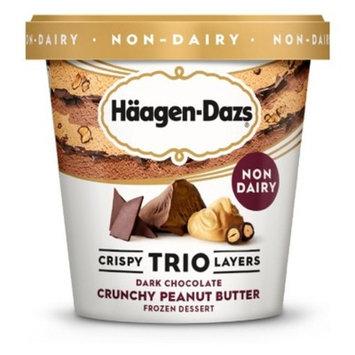 Haagen-Dazs Non Dairy Crispy Trio Layers Dark Chocolate Crunchy Peanut Butter Frozen Dessert - 14oz