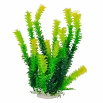 Aquatop Yellow Tipped Aquarium Plant - Green: 12