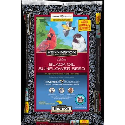 Pennington Select Black Oil Sunflower Seed Wild Bird Feed, 40 lbs